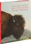 John J. Audubon. Die Säugetiere Nordamerikas. Bild 2