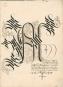 Kalligraphiebuch der Maria von Burgund. Bild 2