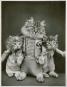 Katzen. Die wundersame Welt des Harry Whittier Frees. Bild 2