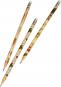 Kew Gardens Bleistifte in Geschenkschachtel. 6 Bleistifte mit Radiergummi, 3 Motive. Bild 2