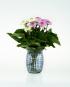 Kleine Vase mit blauen Punkten. Bild 2