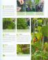Kleiner Garten - große Ernte Bild 2