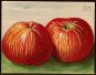 Korbinian Aigner. Äpfel und Birnen. Das Gesamtwerk. Bild 2