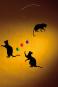 Mobile »Feline - Katzen«. Bild 2