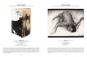 »Nur Papier, und doch die ganze Welt« 200 Jahre Graphische Sammlung. Bild 2