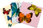Pop-up-Grußkarten-Set »Die Schmetterlinge«. Bild 2
