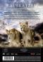 Raubkatzen - Schnell und gefährlich DVD Bild 2