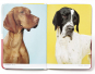 Show Dogs. Bild 2