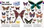 Tiere. Die Vielfalt der Tierwelt in 1500 Bildern. Bild 2