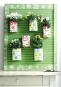 Vertikal pflanzen - Hängende Gärten, begrünte Wände und blühende Paletten Bild 2