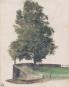 Albrecht Dürer. Meisterwerke im Detail. Bild 3