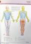 Atlas der Anatomie. Bild 3