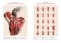 Atlas of Human Anatomy and Surgery. Atlas der menschlichen Anatomie und Chirurgie. The Coloured Plates of 1831-1854. Bild 3