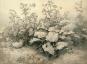 Carl Robert Kummer (1810-1889). Ein Dresdner Landschaftsmaler zwischen Romantik und Realismus. Bild 3