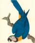 Chinesische Kunst und die Reeves Collection. Bilder der Natur. Bild 3