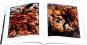 Daniel Coulet. Zwischen Himmel und Hölle. Bild 3