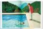 David Hockney. A Bigger Book. Bild 3