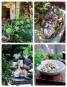 Die neue italienische Landküche. Klassische und vegetarische Rezepte für jede Jahreszeit. Bild 3