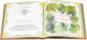 Divertimento in Cucina. Traditionelle Rezepte, Musik und Geschichten aus Italien. Bild 3