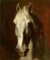 Géricault. Bilder auf Leben und Tod. Bild 3