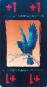Geschichts-Kartenspiel Sioux Bild 3
