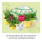 Kräuter-Garten. Dein Gewächshaus für die Fensterbank. Experimentierkasten. Bild 3