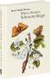 Maria Sibylla Merian. Blüten, Raupen, Schmetterlinge. Der Raupen wunderbare Verwandlung. Bild 3