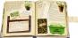 Mein Gemüsegarten. Kleine Schätze und praktisches Wissen für Gemüsefreunde. Bild 3
