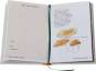 Meine illustrierte Pilzkunde. Ein Buch zum Entdecken, Sammeln und Genießen. Bild 3