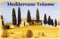 Mini-Gewächshaus »Mediterrane Träume«. Bild 3