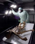Ötzi 2.0. Eine Mumie zwischen Wissenschaft, Kult und Mythos. Bild 3
