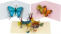 Pop-up-Grußkarten-Set »Die Schmetterlinge«. Bild 3