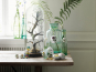 Porzellanei »Blume Sauerklee«. Bild 3