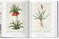 Redouté. Das Buch der Blumen. Bild 3