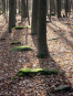 Römerlager Hedemünden. Der augusteische Stützpunkt, seine Außenanlagen, seine Funde und Befunde. Bild 3