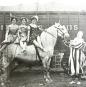 The American Circus. Bild 3