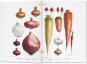The Vegetable Garden - Der Gemüsegarten Bild 3