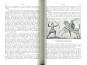 Weltgeschichte des Krieges - Nachdruck des Originals von 1903. Bild 3