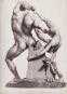 Winckelmann. Das göttliche Geschlecht. Bild 3