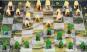 WWF Schachspiel Kongobecken. Bild 3