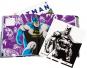 Batman. Eine Geschichte in Bildern. A Visual History. Bild 4