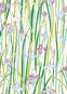 Blumengrüße. 20 Postkarten. Bild 4