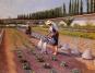 Der Garten in der Kunst. Bild 4