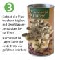 Anzucht-Set für Pilze »Fungi-Box«. Bild 4