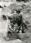 Im Schatten der Pyramiden. Die österreichischen Grabungen in Giza 1912-1929. Bild 4