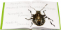 Insecta. Insekten, wie Sie sie noch noch nie gesehen haben. Bild 4