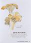Meine illustrierte Pilzkunde. Ein Buch zum Entdecken, Sammeln und Genießen. Bild 4