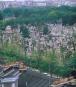 Memento Mori. Friedhöfe Europas. Bild 4
