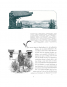 Papierschmetterlinge aus Japan. Bild 4