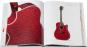 Taylor-Gitarren. 30 Jahre Innovation und Leidenschaft. Bild 4